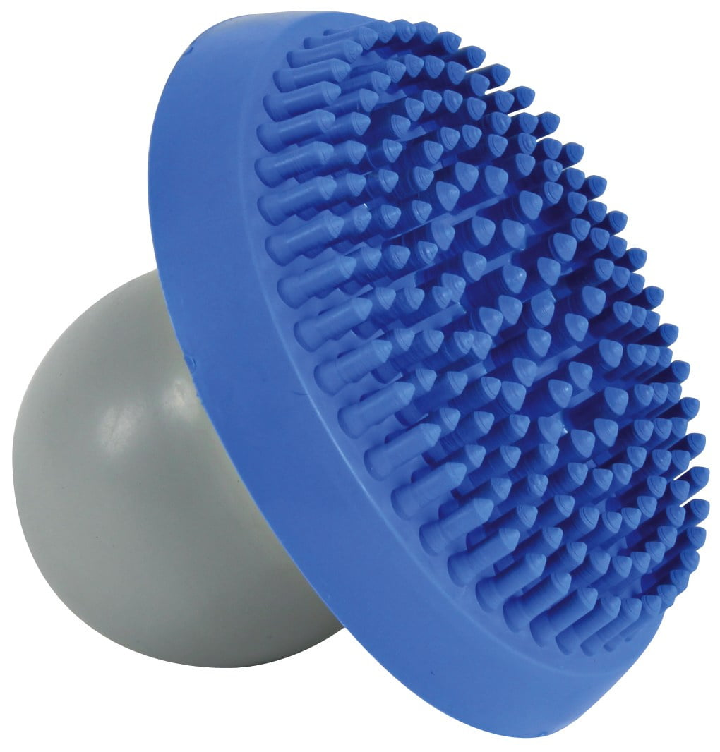 Shampoo En Massagborstel Grijs/Blauw