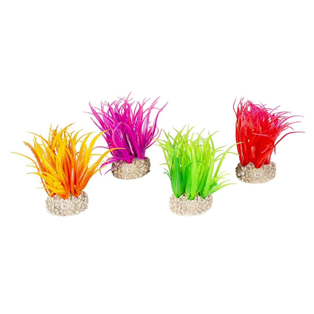 Duvo Plant Hair Grass -S-