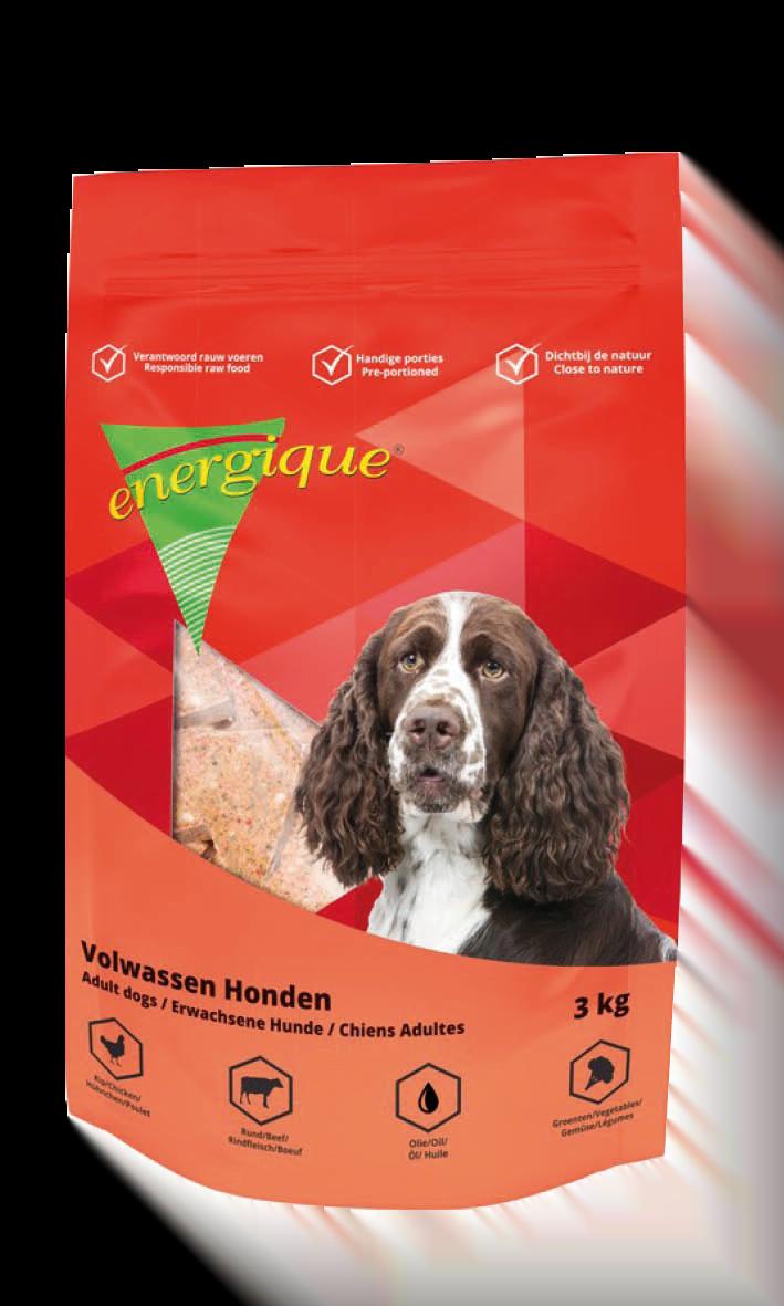 Energique Adult Hond 3kg