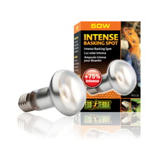 Ex Sun Glo Tight Beam 50w