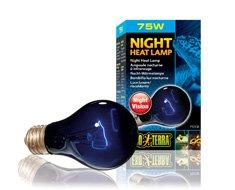 Ex Night Glo Moon Light 75w