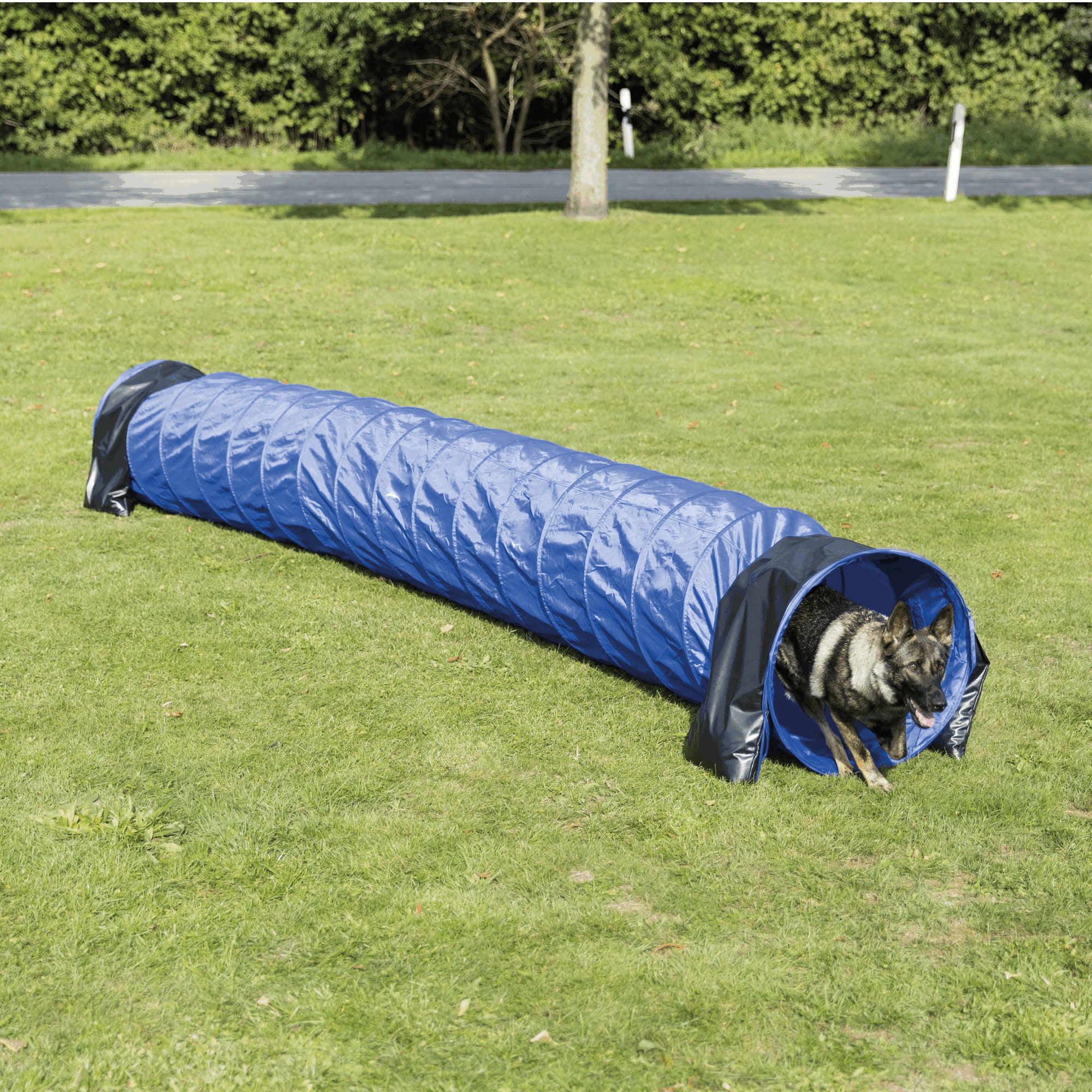 Trixie Dog Agility Basic Tunnel 60cm x 5meter