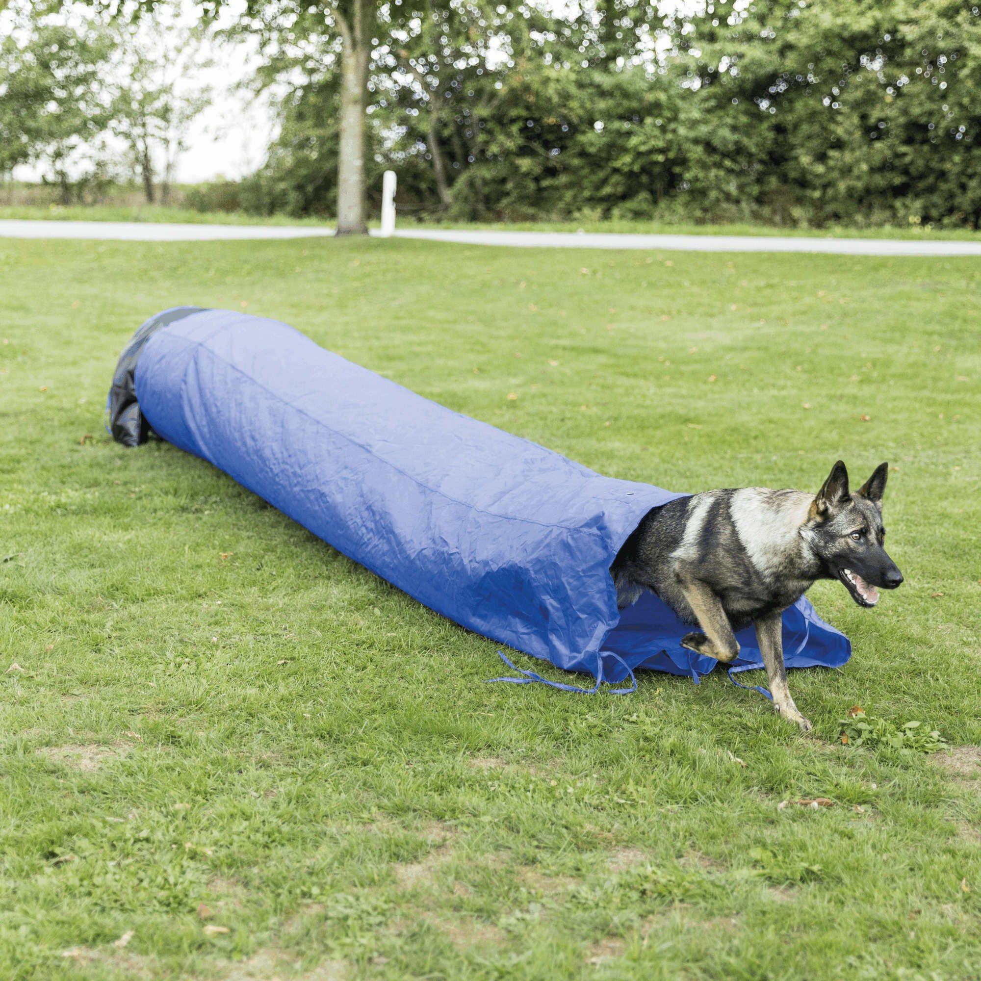 Trixie Dog Agility Slurf 60cmx5meter