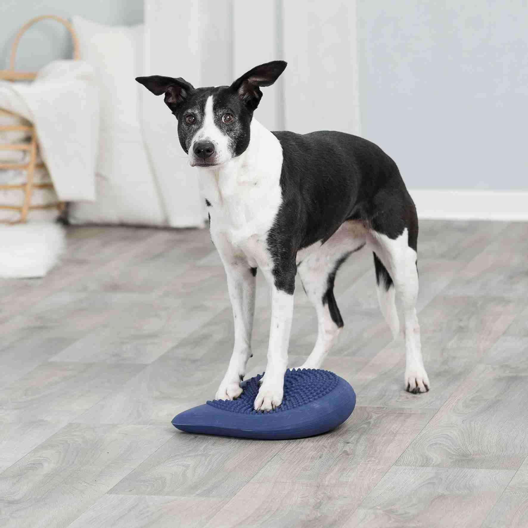 Trixie Dog Agility Balans Kussen 28x4x28cm