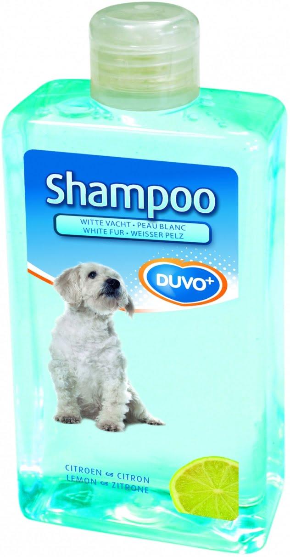 Shampoo Witte Vacht Duvo