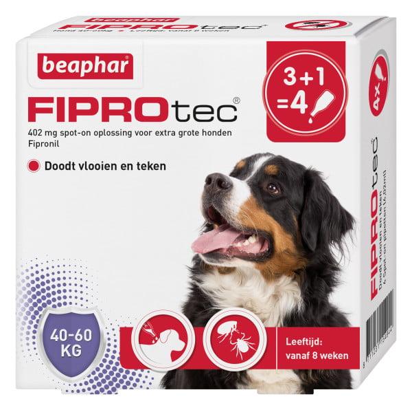 Bea Fiprodog 40-60 Kg  3+1gratis Pipet
